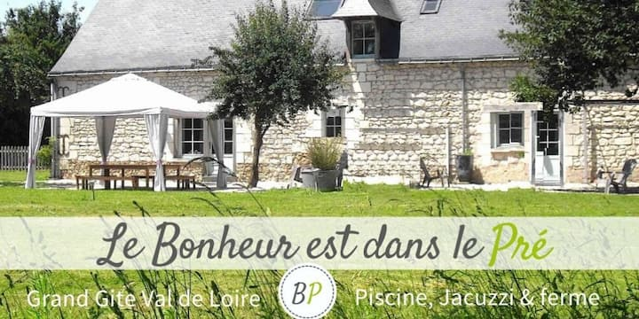 Country house near Saumur, Swimming pool, Jacuzzi