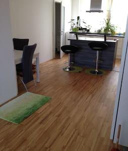 63m2 Wohnung in Wien - Viena