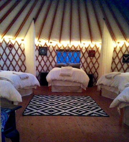 Amazing Yurt for 6 in a Redwood Forest Eco-Retreat - Boulder Creek - Tenda