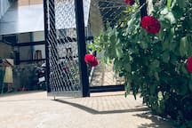 Rose home  Ngủ với hoa hồng