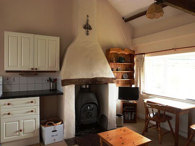Log Burner (and central heating on top)
