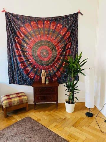Zimmer mit Altbauflair, inmitten von Karlsruhe