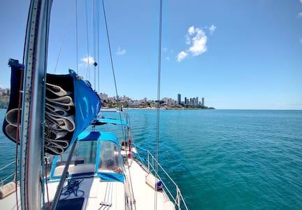 Passeio de Veleiro / Charter Sailboat