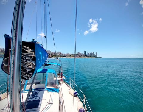 Charter Sailboat