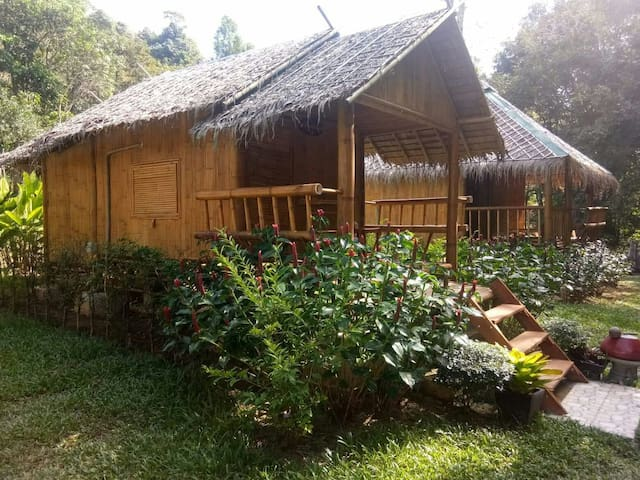 Double room with Garden view 2,3