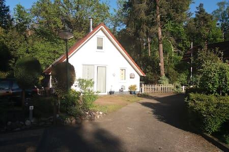 Boshuisje nabij het Reestdal