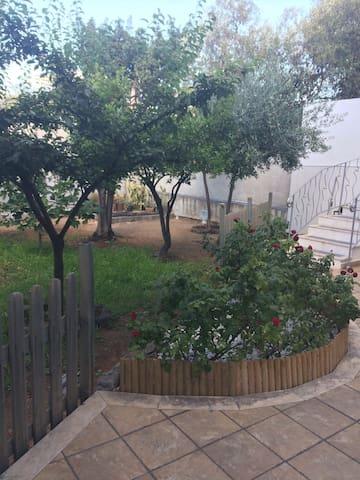 Villa Adriana stanze private Palermo mare e citta'