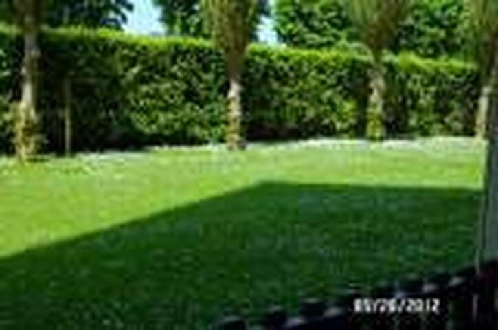 La pelouse qui borde notre terrasse