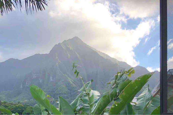 Gorgeous Hawaiian Views 1 Bedroom