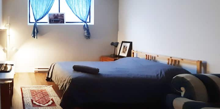 Warm 1 bdroom aptmt close to metro, park and shops