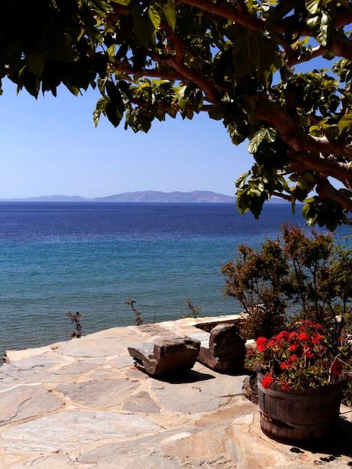 dreamlike view