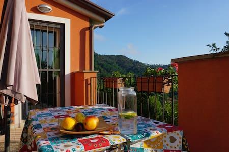 Il Pettirosso-house in the greenery near 5 Terre