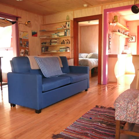 Great collection of books. Spacious living room - blue couch converts to a double bed