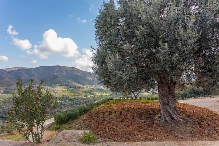 Augusta Deres Cretan Mountain Retreat with View - Chania - Ev