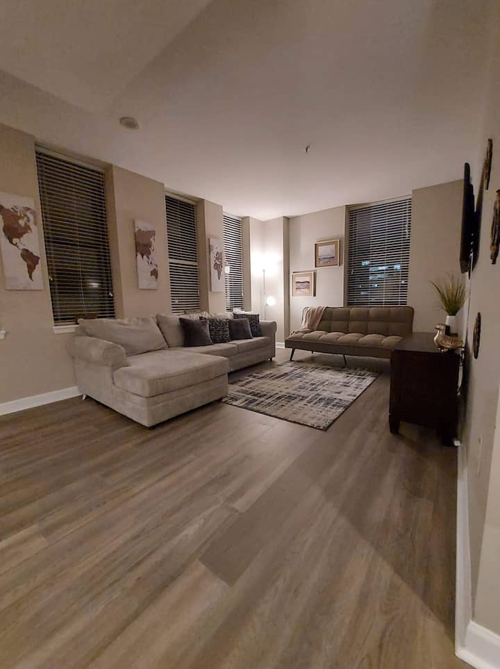 Luxury Apt in Baltimore's Judicial District w/view