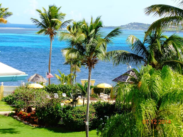 Tropical Paradise. Beach, Pool, centrally located. - Christiansted - Wohnung