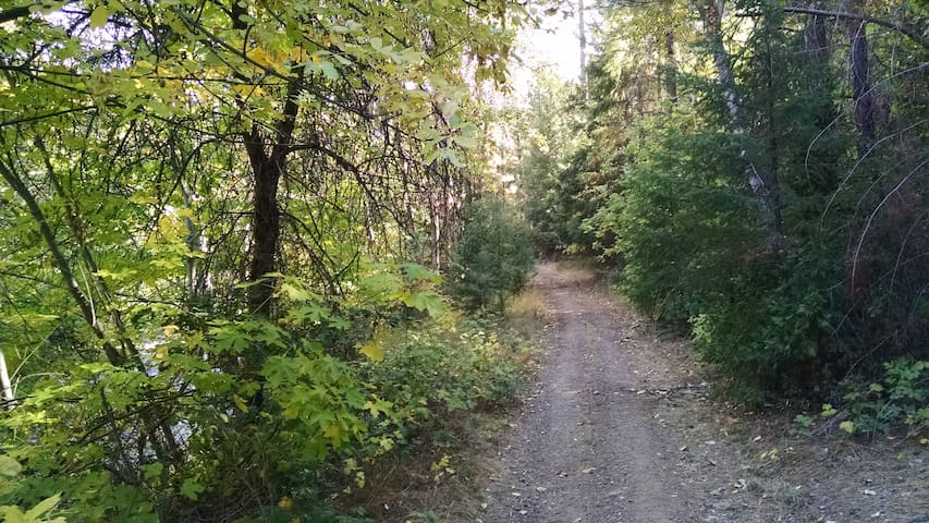 Access road to camp site