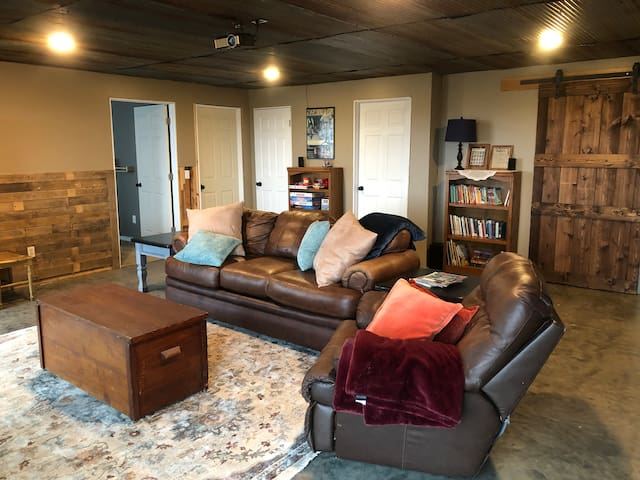 Basement family room with couch bed