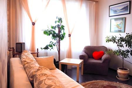 Уютная квартира для ценящих комфорт и удобство - Moskva - 公寓