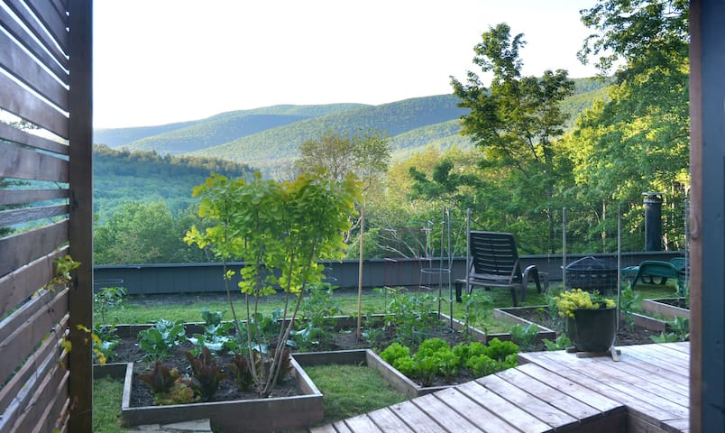 Micro Catskills Cottage with Awesome View