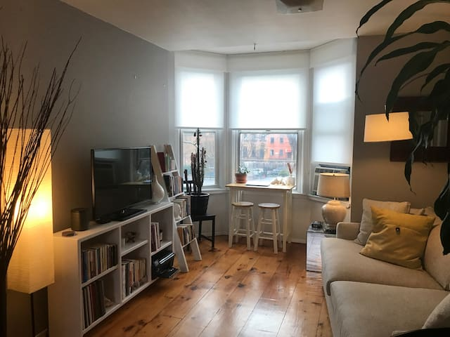 Gorgeous 1 bdrm in Carroll Gardens