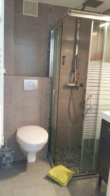 Toilette avec salle de bain