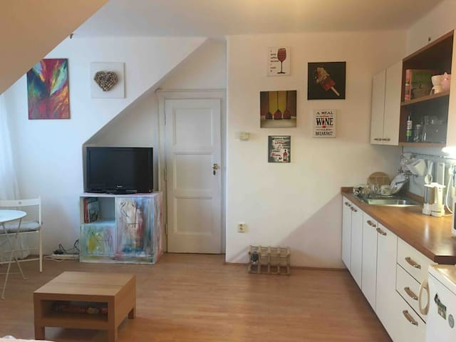 Podkrovni byt 1kk