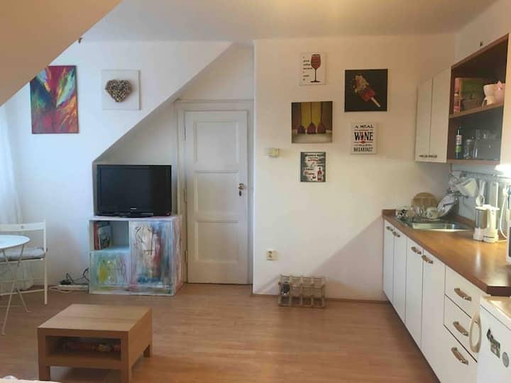 Útulný podkrovní byt 1+kk
