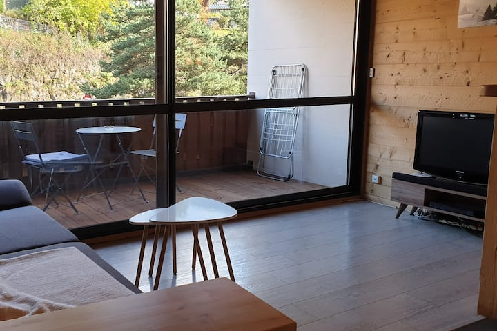 Studio à louer 25m2 Les Carroz centre village