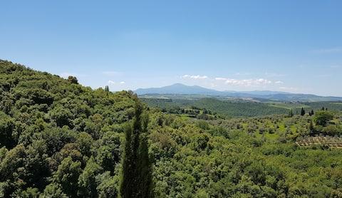 Bella vista Flat II