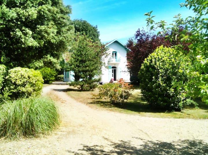 Villa à 50 m de la plage avec grand jardin