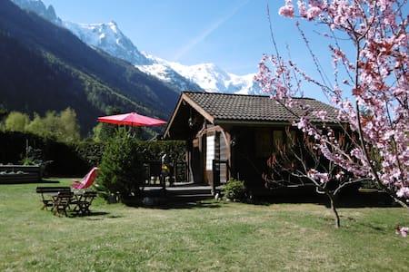 Mazot le Petit Drus - Chamonix - Blockhütte