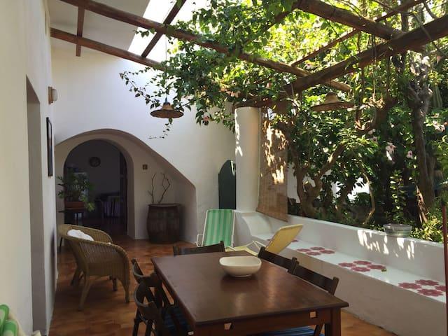 """Casa """"Il Cactus"""" - Malfa - House"""