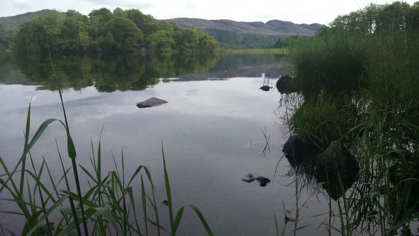 Cosy house by the lakes!!! - Ballinafad - House