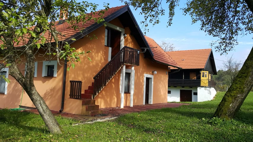 Renovated house in Lika - Donji Budački - House