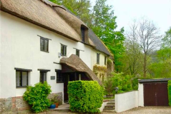 Entire ground floor of stylish cottage