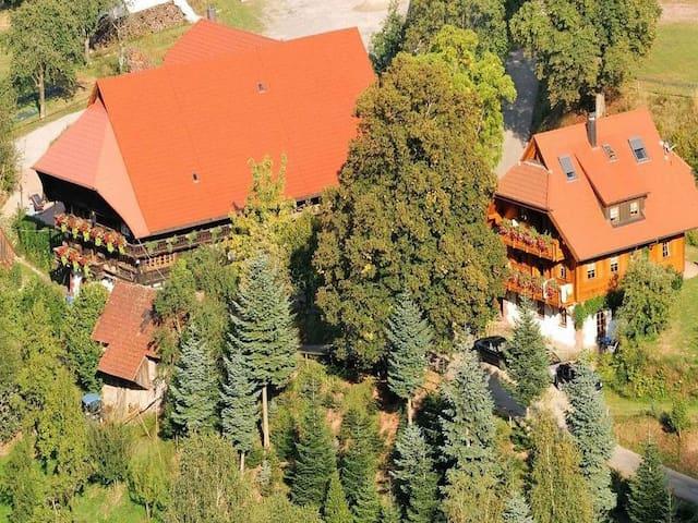 Ritterhof, (Durbach), Ferienwohnung Schwalbennest, 38qm, 1 Schlafzimmer, für max. 2 Personen