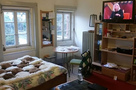 small flat in old house (ground floor) - Ittigen