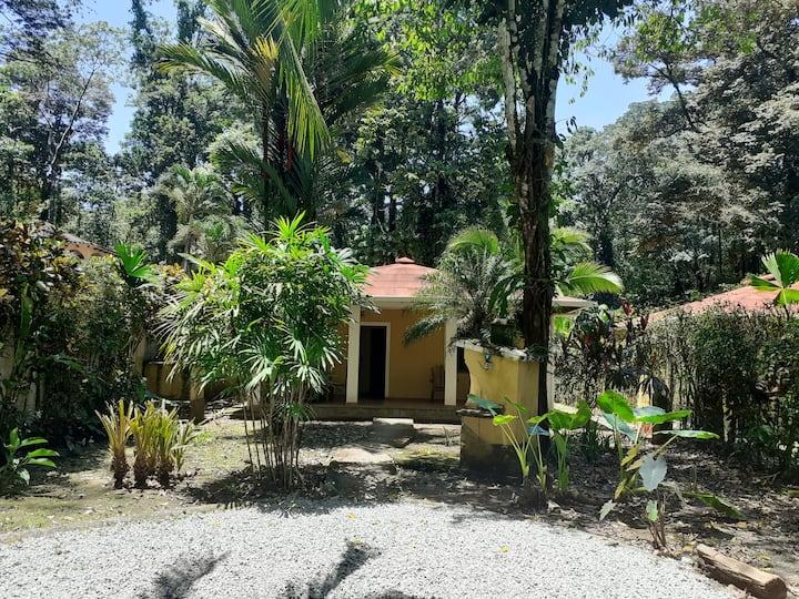 La Perla del Caribe - Villas (1)