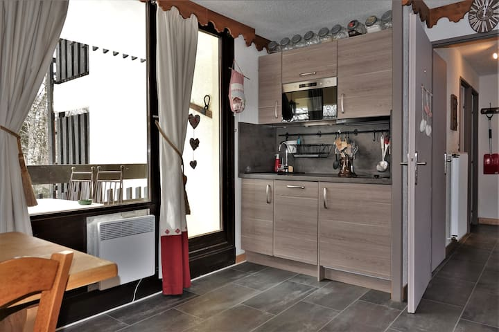 Apartment 35 m2, 4 people, 1 bedroom near ski