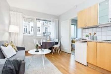 Super cozy little apartment near Vigeland park - Huoneisto