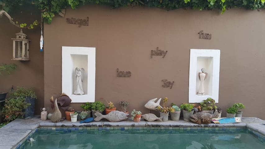 Solar heated plunge pool in courtyard ...