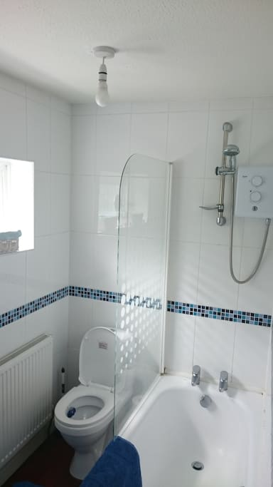 Bathroom with sink, toilet and shower bath.