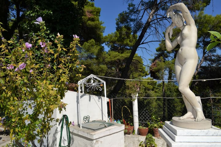 Apartment with parking and garden in the Gargano