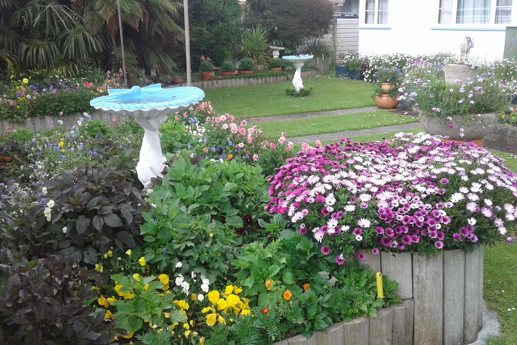 Front Garden as at 19/02/2018 dahlias starting to come up