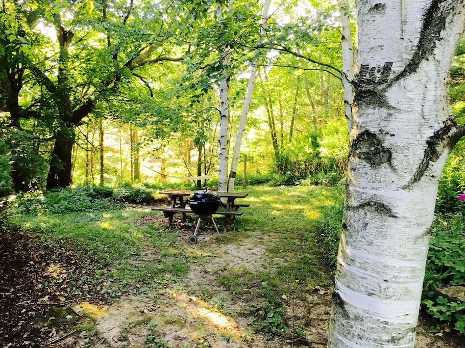 Spacious Hill Cottage yard includes a grill and a picnic table plus a hammock under the trees
