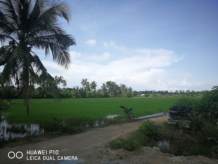The Balik Pulau Homestay and Farmstay