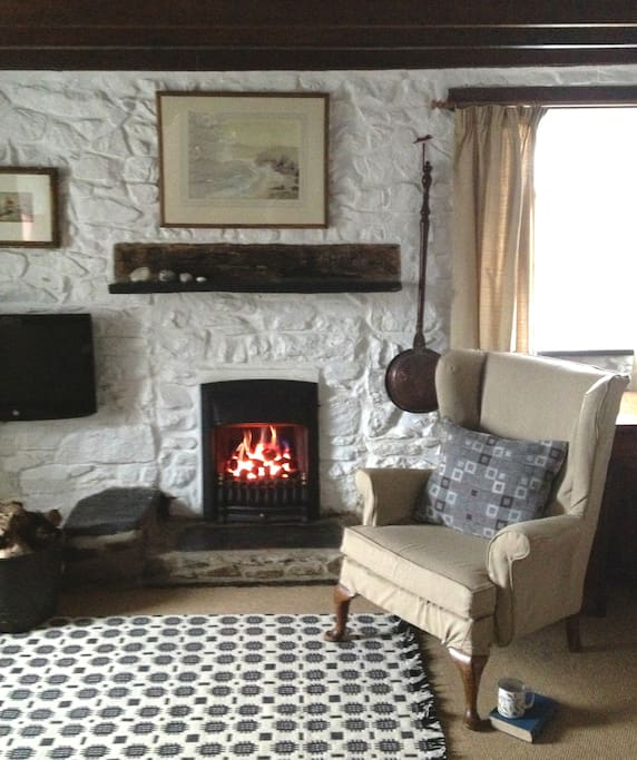 Cosy living room with all mod cons.