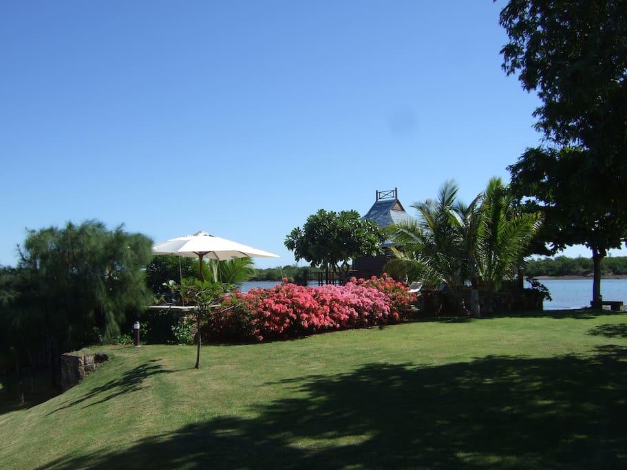 Le coin Piscine vue du jardin