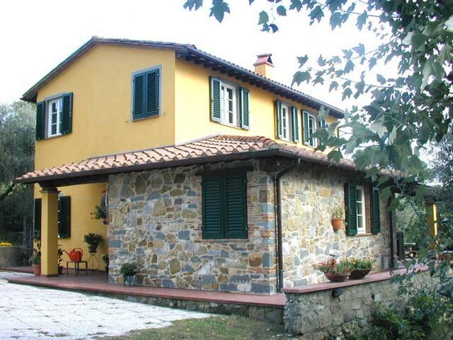 Per  chi  ama    la  tranquillità - Lucca - Bed & Breakfast